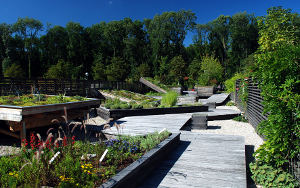 Drvena staza u modernom vrtu