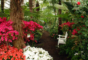 garden nook with bench