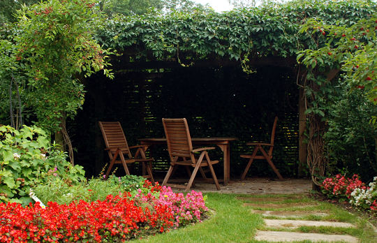 Pergola in the garden covered with plants