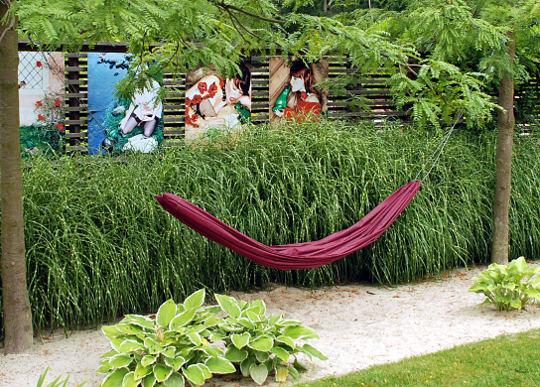 Ukrasna trava