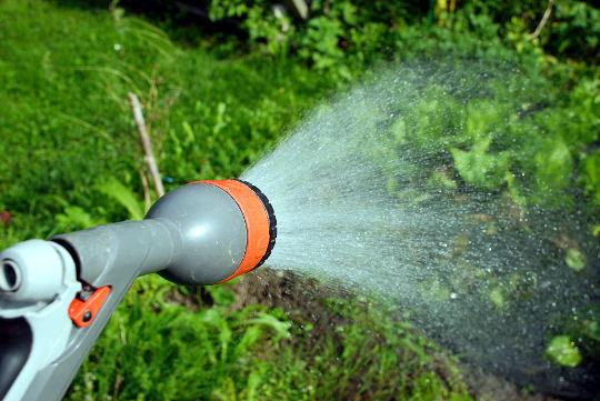 Zalijevanje vrta sa vodom iz cijevi