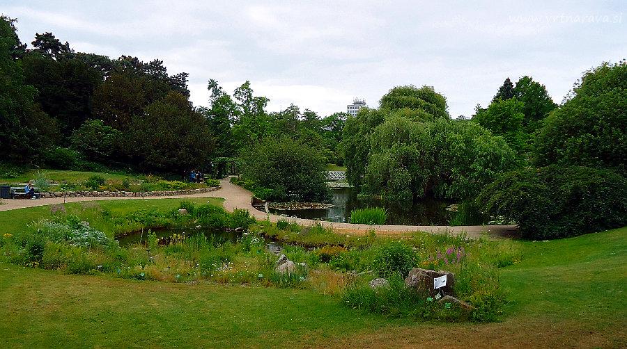 Botanični vrt Kopenhagen - severni del ribnika
