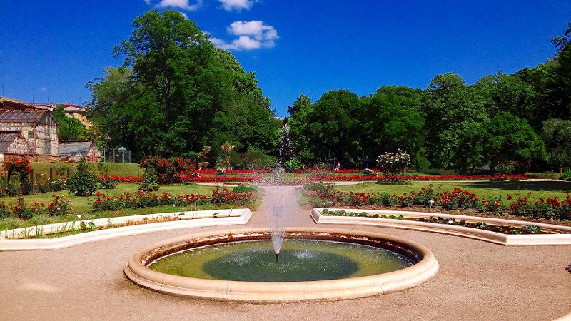 Fontana v botaničnem vrtu