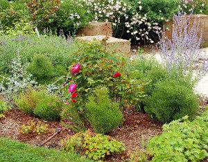 Biljni vrt