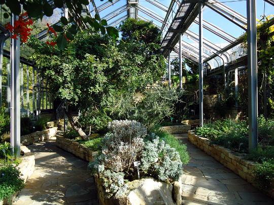 mediteranski zimski vrt